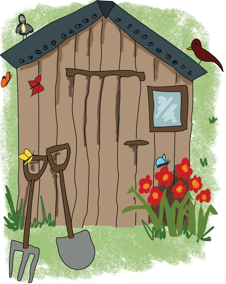 Garden shed and tools