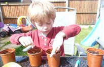 Ollie planting sunflower seeds