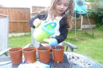 Paige watering sunflowers