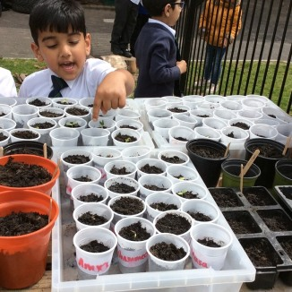 Seed planting at Tinsley Meadows Primary Academy in Sheffield.